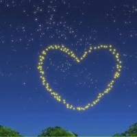 第九期:动物百科: 闪闪发光的萤火虫
